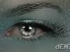grey_eye