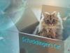Gatto di Schrödinger - Schrödinger's Cat