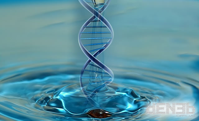 DNA & Water Memory - Il DNA e la memoria dell'acqua