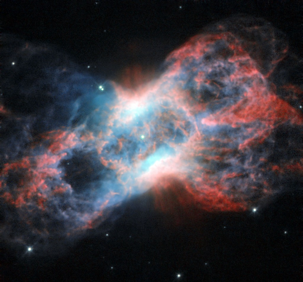 Cygnus Constellation: The Swan and the Butterfly - Costellazione del Cigno: il cigno e la farfalla