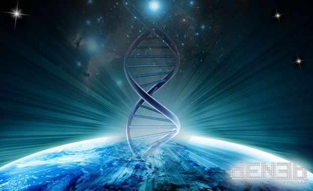 DNA: The Molecule that Defines You - DNA: la molecola che ci definisce