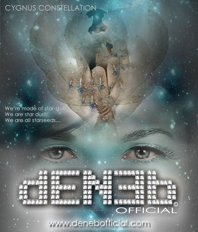 DENEB Official ©