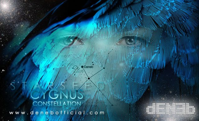 Cygnus: The Blue Constellation - Cigno: La Costellazione Blu