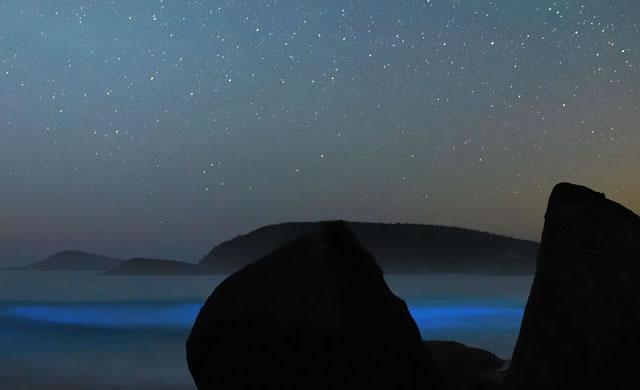 Spettacolo di luci naturali: Stelle e Bioluminescenza - Liquid Light Show