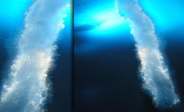 Ice tubes in polar seas—'brinicles' or 'sea stalactites'—provide clues to origin of life