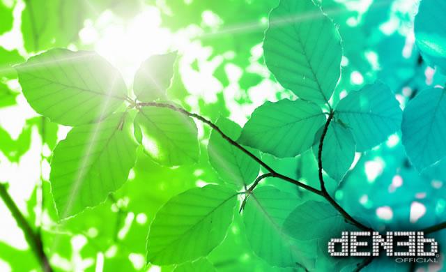 Trasporto Quantistico: il segreto della Fotosintesi - Uncovering quantum secret in photosynthesis