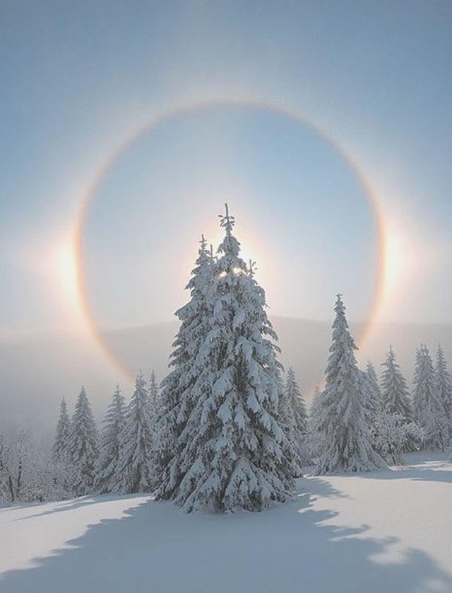 Favola d'Inverno: Alone Solare - Winter's Tale: Sun Halo
