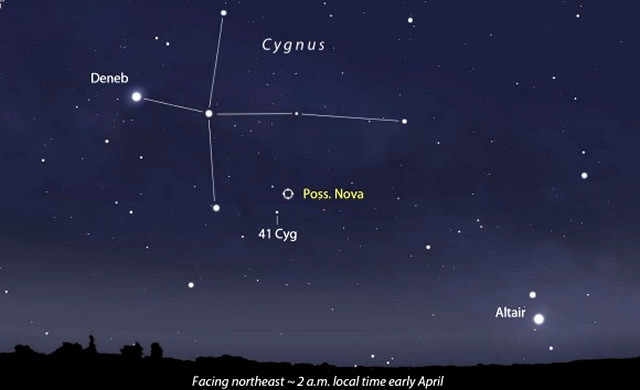 E' Nata Una Nuova Stella che Brilla Nella Costellazione del Cigno! - Possible Nova Pops in Cygnus