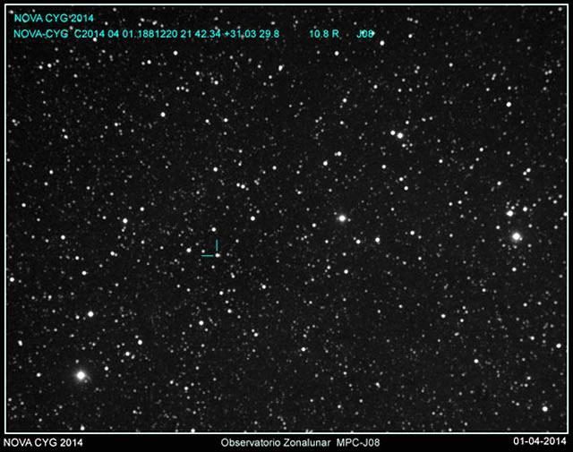 Una Nuova Stella Brilla Nella Costellazione del Cigno! - Possible Nova Pops in Cygnus!